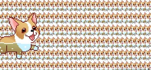 corgi orgy crazy websites
